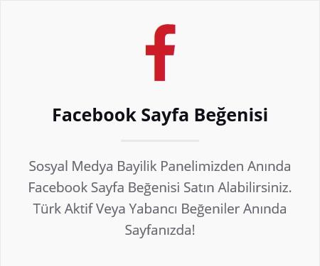 facebook sayfa beğenisi satın al